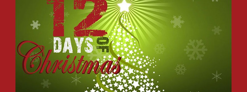 "Our Annual ""12 Days of Christmas Sale!"""