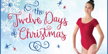 """It's Back – Our """"12 Days of Christmas"""" Sale!"""